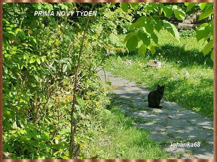 An den Beitrag angehängtes Bild: http://img22.dreamies.de/img/541/b/x08p6y8kmzr.jpg
