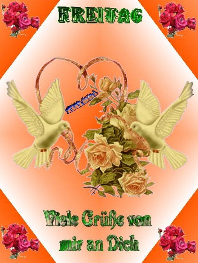 An den Beitrag angehängtes Bild: http://img22.dreamies.de/img/697/b/ir3d4tg1xxb.jpg